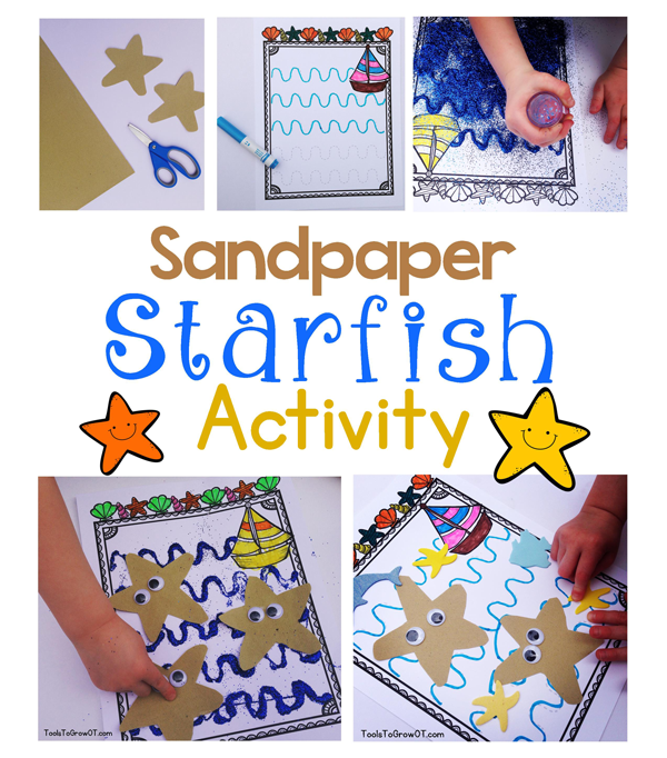Sandpaper Starfish Sea Star Craft