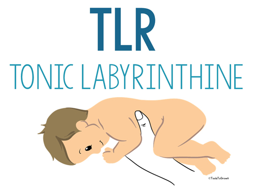 Tonic Labyrinthine-Prone & Supine (TLR) - Copyright ToolsToGrowOT.com