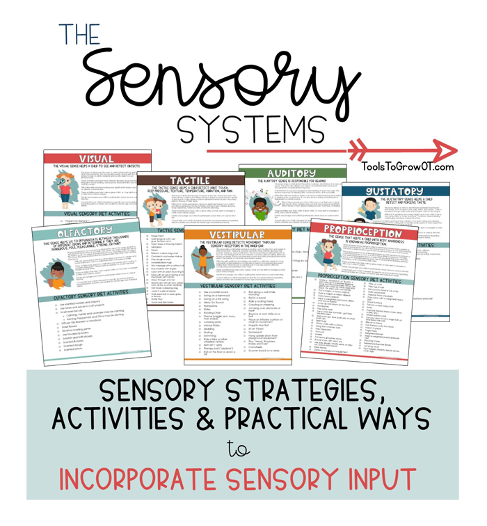 Sensory Systems - Ideas and Activites