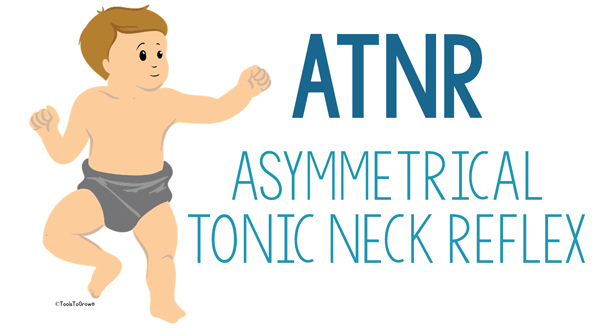 Asymmetrical Tonic Neck Reflex (ATNR) Copyright - ToolsToGrowOT.com