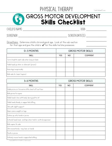 Physical therapy treatment documentation caseload for Fine motor skills assessment checklist